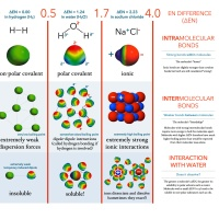 Infographic: Defining Bonds as Electronegativity Differences (∆EN)