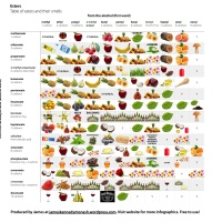 Infographic: Table of Esters and Their Smells v2 (200+ smells!)