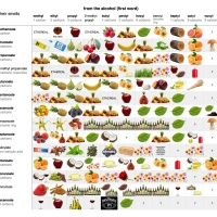 Infographic: Table of Esters and their Smells