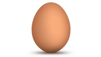 egg-thumb.png?w=350&h=200&crop=1