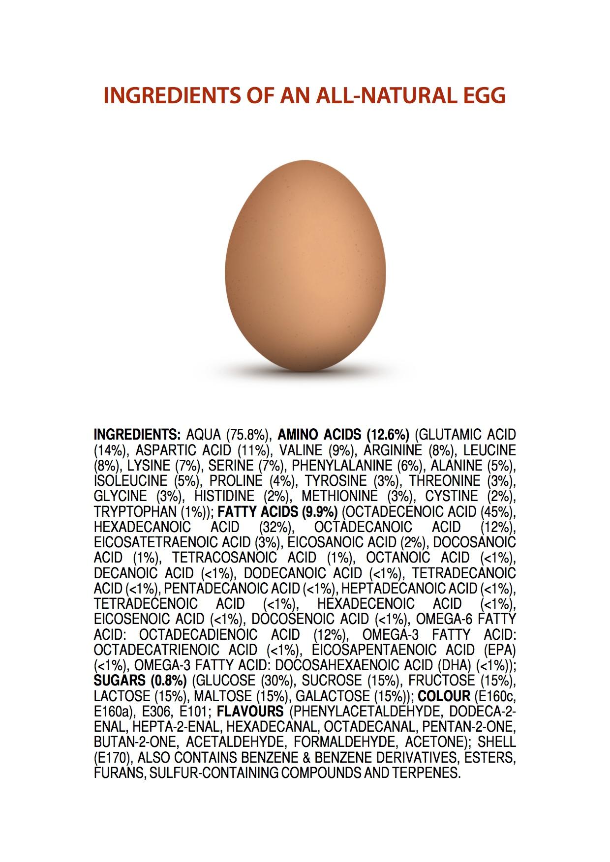 All Natural Princess Play Makeup Kit: Ingredients Of An All-Natural Egg