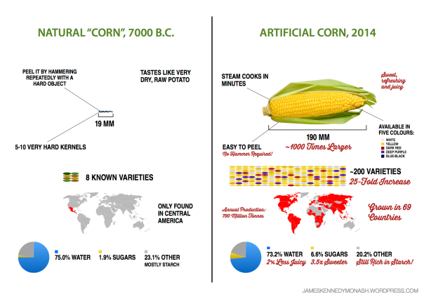 artificial natural corn james kennedy monash science chemistry