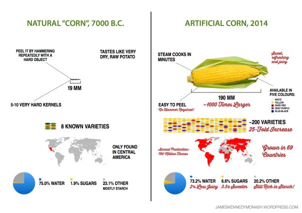 https://jameskennedymonash.files.wordpress.com/2014/07/artificial-natural-corn3.png?w=604&h=426