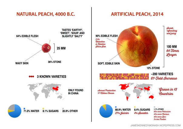 https://jameskennedymonash.files.wordpress.com/2014/07/artificial-natural-peach2.png?w=604&h=426