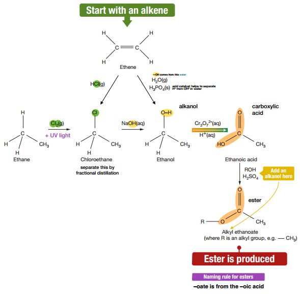 making esters from alkenes
