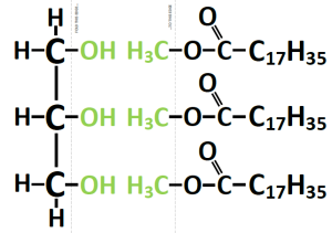 foldable biomolecules: biodiesel