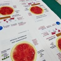 Fighting Chemophobia watermelon page