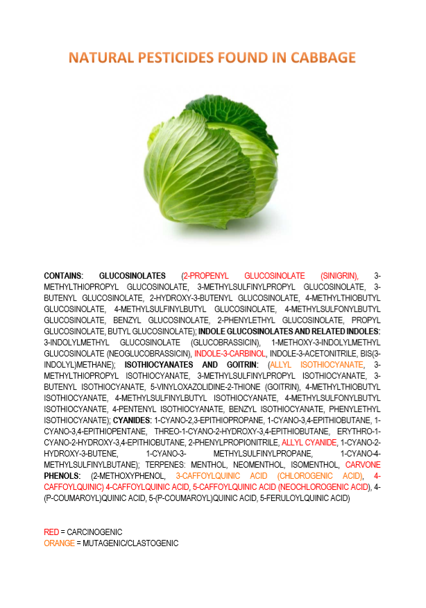 natural pesticides in cabbage