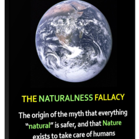 My latest book, The Naturalness Fallacy, is out now